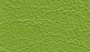 lamb-leather_1_11_green