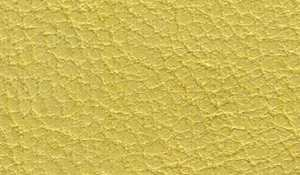 lamb-leather_2_28_yellow